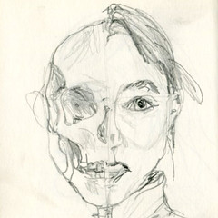 face168 (mapgirl3) Tags: face pencil drawing half scull