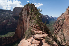 Angel's Landing Trail (no3rdw) Tags: park outdoors utah dangerous rocky hike landing trail national angels zion steep
