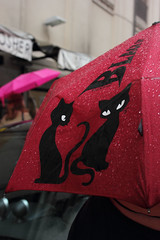It rains cats and dogs... (Magic Garden 2012) Tags: red cats rain details dettagli rosso pioggia gatti