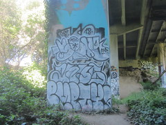 SPAYS / ANUS / EMPTY (Lurk Daily) Tags: santa graffiti empty cruz acs anus spays