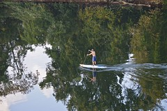 Stand Up Paddleboarding -  Schuylkill river (pontla) Tags: reflection reflections river fiume paddling schuylkillriver remare standuppaddleboarding
