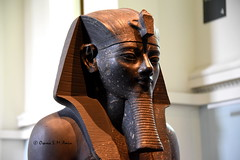 King Amenhotep III (Sumer and Akkad!) Tags: ramesses amenhotep abydos karnak thebes egypt statue pharaoh cobra vulture osiris isis sphinx ram falsedoor stele cat britishmuseum british museum bloomsbury london hathor luxor philae ptolemaicperiod middlekingdom newkingdom lateperiod ahmose thutmose giza saqqara memphis