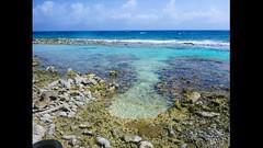 Hidden Jacuzi (jasonyarzagaray) Tags: dutchcaribbean caribbean shipwreck tropical blue beach sea carribean dutchcarribean oranjestad underwater padi diving dive fins snorkel snorkeling savaneta mangelhalto aruba