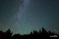 From Perseus (kevin-palmer) Tags: perseid meteorshower shootingstar night sky stars starry astronomy astrophotography perseids perseidmeteorshower dark beartoothmountains beartoothhighway wyoming summer august early morning airglow green pentaxk5 samyang10mmf28 pine trees forest shoshonenationalforest clear astrometrydotnet:id=nova1685657 astrometrydotnet:status=failed