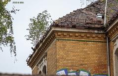 Leipzig, Olbrichtstrae, Ruine eines Alten Kasernengebudes, (joergpeterjunk) Tags: leipzig olbrichtstrase ruine kasernengebudes outdoor architektur canoneos50d canonef100400mmf456lisusm
