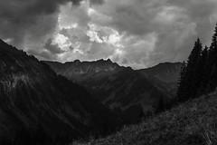 The Darkness around me (Netsrak) Tags: mittelberg vorarlberg sterreich at tree trees baum bume berg berge mountain mountains alps alpen