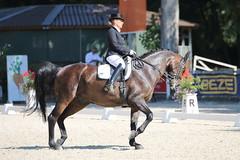 IMG_7572 (dreiwn) Tags: dressage dressur dressuur pferd reitturnier turnierreiten pferdesport horse horseback horseriding equestrian reitverein dressurprfung kandare doublebridle reiten pferde reitplatz ridingarena