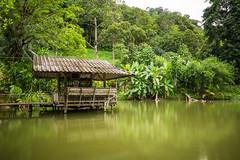 Lake Shore Pavilion (eltonmaxim) Tags: lake natural reflection forest lakeshore pavilion longexposure