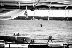 sails down (-gregg-) Tags: sail boat rope bw water st michaels md