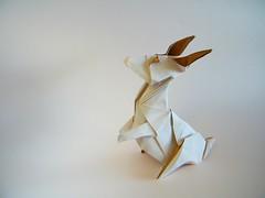 Zai (The Bunny) - Kunsulu Jilkishiyeva (Rui.Roda) Tags: origami papiroflexia papierfalten conejo coelho lapin zai the bunny kunsulu jilkishiyeva