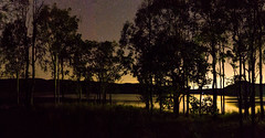 Golden Night Light (Pollution) (andrew.walker28) Tags: milky way stars starlight galaxy starscape landscape night darkness long exposure lake cressbrook trees water queensland australia light pollution