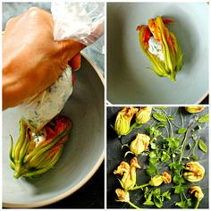 Panko-Crusted Baked (alaridesign) Tags: pankocrusted baked squash blossoms with garden herb ricotta
