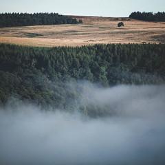 Rising Out (ChrisDale) Tags: chrisdale chrismdale cloud dawn fog haze hudswell inversion landscape marske mist morning northyorkshire northyorkshiredales richmond sunrise swaledale trees yorkshiredales richmondshiredistrict england unitedkingdom