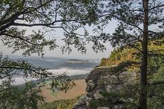 Blick auf den Knigstein (Paulas Welt 73) Tags: landschaft lilienstein knigstein aussicht schsische schweiz sachsen