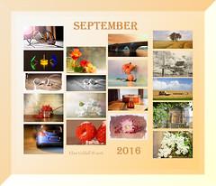 September 2016 at a glance (Elisafox22) Tags: elisafox22 september 2016 collage snapshot images summary thumbnails border elisaliddell2016