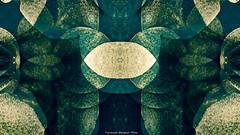 superposiciones (ojoadicto) Tags: abstract abstracto digitalmanipulation manipulaciondefotos artisticphotography
