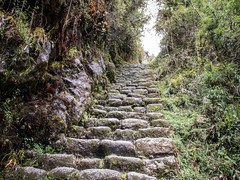 Words have two meanings (Charlie2012RTW) Tags: peru stairs caminodelinca