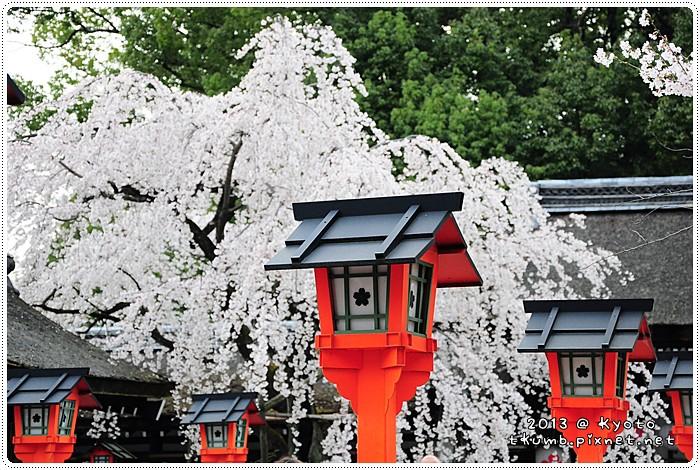 平野神社 (9).jpg