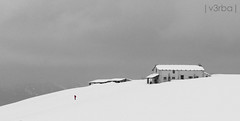 Red (|v3rba|) Tags: red bw snow italia grigio verona neve rosso montagna monti veneto lessinia