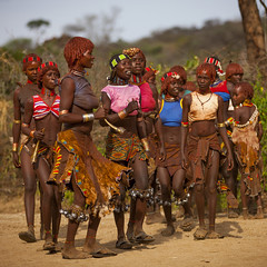 Hamer Tribe Women Dancing During Bull Jumping Ceremony, Turmi, Omo Valley, Ethiopia (Eric Lafforgue) Tags: africa people haircut color tree leather square outside photography togetherness cow movement community colorful day dancing outdoor fulllength performance ceremony culture jewelry skirt tribal bull celebration ornament omovalley tradition ethiopia dust tribe pastoral ethnic hairstyle rite groupofpeople gravel hamar bodymodification jewel rythm hamer traditionalculture hornofafrica ethnology omo eastafrica animalskin traditionalclothing realpeople colorimage beautify tribeswoman whippingceremony redochre turmi africanethnicity pastoralist pastoralism semidress bullleaping snnpr bulljumping bodytransformation southernnationsnationalitiesandpeoplesregion hamerbenaworeda ethiopianethnicity hamerbena hammerbena eth8331