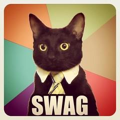 Swag Kat 3000 (Hexylvania) Tags: cats silly cat kat funny kitty meme meow wtf memes flickrandroidapp:filter=none hexylvania