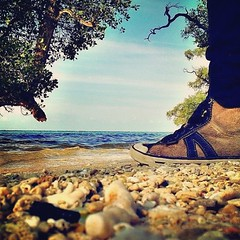 #iphoneography #photograph #stone #mangrove #tree #sea #beach #shoes #cool #sky #cinematic #awesome #iLoveAceh (riezVE) Tags: square sierra squareformat iphoneography instagramapp uploaded:by=instagram foursquare:venue=50e2a0bde4b0fe64477d99da