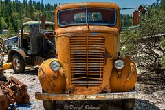 Junkyard Guardian (sierrasylvan) Tags: california foothills chevrolet truck canon rust sigma adobe junkyard salvageyard nevadacounty northsanjuan sierranevadafoothills canoneos50d oldchevrolettruck lightroom3 zeikos photomatixpro4 adobephotoshopcs5 adobebridgecs5 sigma1770mmf2845dcmacrolens zeikoscpl 1939chevroletcoewrecker