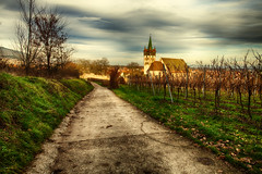 ([ raymond ]) Tags: road winter france architecture landscape vineyard alsace elsass chatenois img5549