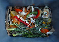 Compost 20 (szczel) Tags: food organic waste recycle compost backtonature dp2merrill