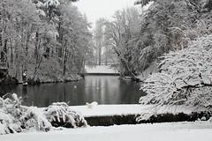 Corbetta (Roberto Vecchio) Tags: parco snow neve corbetta canon7d villaferrario