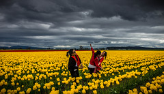 Joy of life (kalpurush :)) Tags: red sky flower green nature yellow landscape flickr sony group tulip environment environmentalportrait sonya77