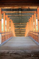 WOODEN BRIDGE (Munisch) Tags: wood old morning travel bridge light color history architecture canon geotagged photography eos rebel photo focus asia bhutan 1855mm punakha stillphotography 550d t2i