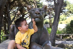 Nicholas and the Lion