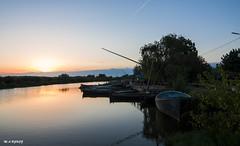 boats (jopas2800) Tags: boats sunset tree river orilla albufera valencia espaa nikond610 tokina1628
