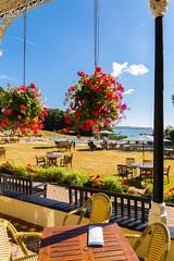 2016-08-14_09-45-06-5D3-0818-ew (mark@langstone) Tags: grounds hotel lawn seaview flowers guests people trees verandah woodland dawlish devon unitedkingdom gbr