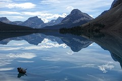 Bow Lake (Edna Winti) Tags: ednawinti hiking alberta bowlake banffnationalpark reflaction