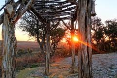 Texas Alter (howard_dunlap) Tags: texas ranch sunrise alter