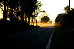 Early morning road fog (Throwingbull) Tags: poolesville md maryland city town municipality incorporated history historic morning daybreak sunup sunrise fog road