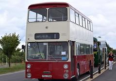 Ex Coventry Transport/WMPTE Daimler Fleetline/East Lancs, 135 (paulburr73) Tags: 1135 135 135y coventry daimlerfleetline radford eastlancs pdu135m wmpte westmidlands cct coventrytransport preserved rafgaydon gaydon b4100 warks warwickshire britishmotormuseum busesfestival 2016 august doubledecker bus buses formerairfield eastlancashire newin1973