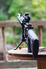 Day 248 (rendezvousnu) Tags: eulalie projecteulalie project365 2a secondamendment threeprecent america ar15 pewpew shoot guns gun