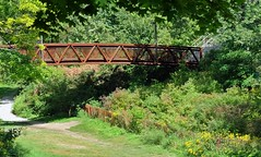 Bridge At The Beaches (Jo Zimny Photos) Tags: theflickrlounge peopleplacesthings torontotrip bridge old rusty ravine trees plants thebeaches