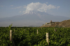 Ararat (5137 moh.) (dese) Tags: vineyard vingard ararat noah mountain armenia tyrkia july16 2016 farming fjell khorvirap turkey monastery araratplain laurdag saturday landscape landskap vineyardsnearkhorvirap vineyards araratprovince armenien summer sommar druer vin july juli  ermenija armnie wine monteararat horvirap klosterchorvirap kloster chorvirap   montagne vinograd wijngaard vingrd  iyayararat arda  ararate armnia   araratsbjerg noa