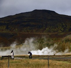 Geyser style (Sanda_I) Tags: geyser hot water earth nature wild free landscape iceland islande thermal soufre mystic mist colors green