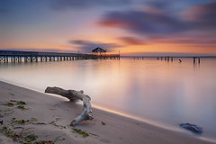 are we predestined to get what we get (kenjiedwards) Tags: luminosity tone contrast color layers singleshot doge burn leefilters leesylvania neutraldensity potomacriver virginia waterscape landscape pier sunrise sand driftwood beach groyne dawn clouds sliderssunday