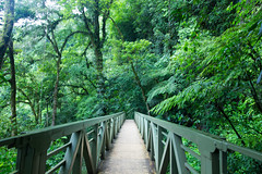 Costa Rica (jorge.cancela) Tags: costa rica la fortuna catarata waterfall