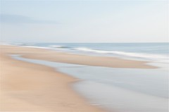 Shore Abstract (fritman99) Tags: beach shore delaware sea sand seashells bethanybeach