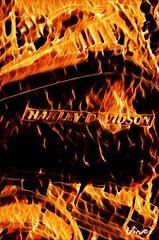 On Fire - Harley Davidson Motorbike (eagle1effi) Tags: vinci art eagle1effi bike motorbike harley davidson motrorrad kunst