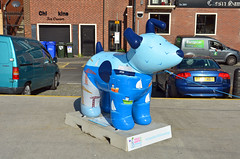Skipper-O-17-September-2016 (Steve Ellwood Whitley Bay) Tags: greatnorthsnowdogs guidedog mikeclay northshields cliffordsfort ellwood steveellwood skipper joannewishart dfds westernquay fishquay