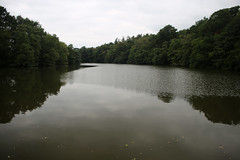 Virginia Water (JonCombe) Tags: surrey virginiawater windsorgreatpark