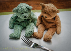 I don't know what it is (HTBT) (13skies) Tags: happyteddybeartuesday teddybear twobears fork curious wondering knowledge asking etiquette manners polite pasta food eating green brown tuesday placemat table 13skies
